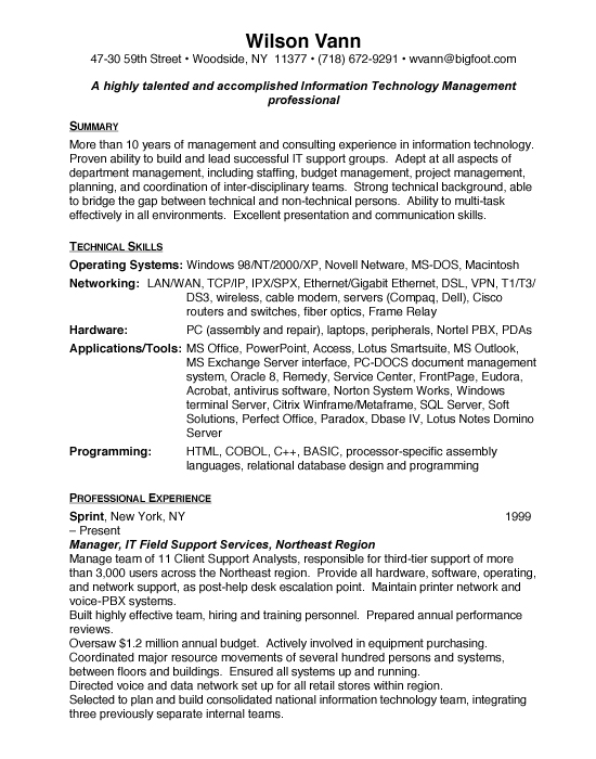 Information Technology Director Sample Resume