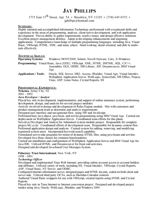 java developer programmer free resumes