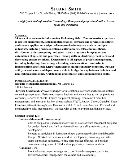 sample technical consultant resume free resumes